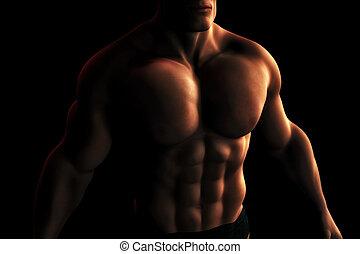bodybuilder, mannelijke , torso, illustratie, digitale