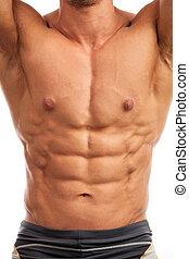 bodybuilder, sobre, torso, branca