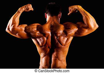 bodybuilder, topo, vista traseira