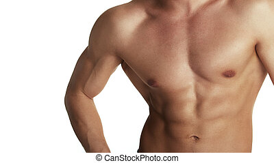 bodybuilder, torso, gespierd