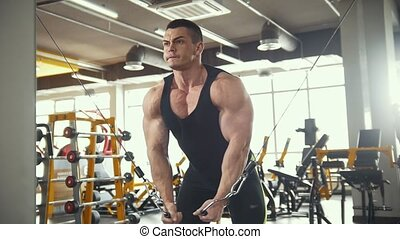 Bodybuilder training in the gym - young muscular man perform training for biceps near mirror, slider shot
