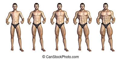 bodybuilder's, omdannelse, step-by-step