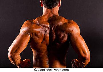 bodybuilder's, zurück, hintere ansicht
