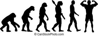 bodybuilding, evolutie