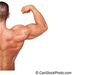 bodybuilding, kopie, achtergrond, space.