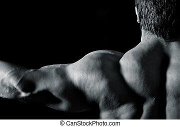 bodybuilding, mann