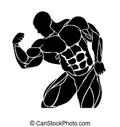 bodybuilding, powerlifting