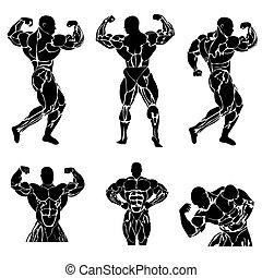 Bodybuilding set - Bodybuilding, power lifting, icon, set,...