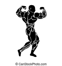 bodybuilding, weight lifting, power lifting, athlete, vector...