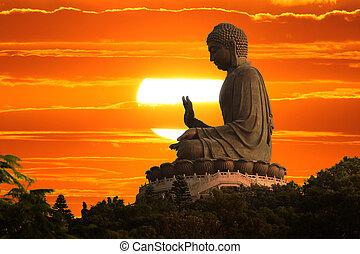 boeddha, op, ondergaande zon