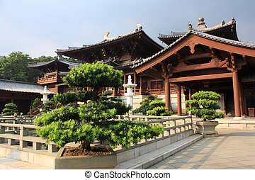 boeddhistische tempel, in, hong kong