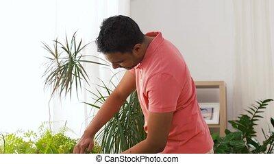 boeiend, houseplants, indiër, thuis, man, care