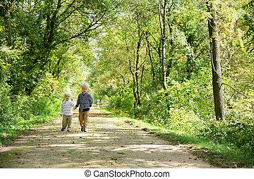 boeiend, jonge, wandeling, herfst, hout, holdingshanden, kinderen