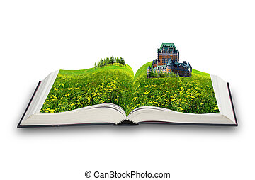 boek, magisch