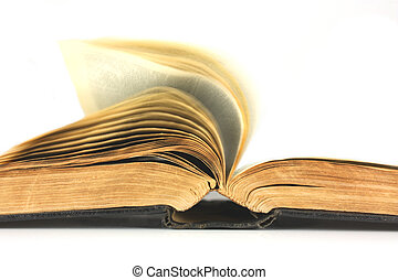 boek, oud, het wegknippen