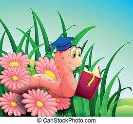 boek, regenworm, tuin, lezende