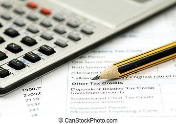 boekhouding, concept, financieel