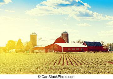 boerderij, amerikaan, traditionele
