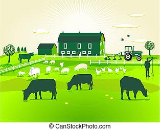boerderij, groene