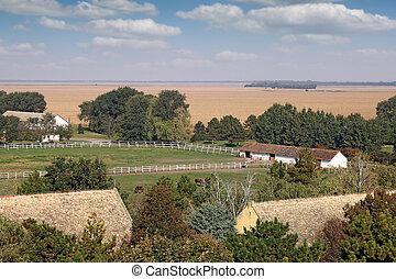 boerderij, met, paarden, arerial, aanzicht, landscape