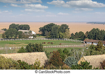 boerderij, met, paarden, landelijk landschap