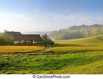 boerderij, mist