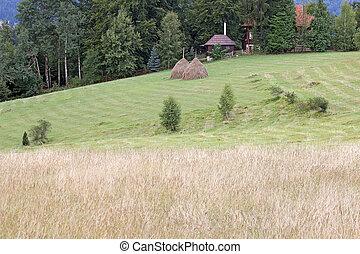 boerderij, op, heuvel, landelijk landschap