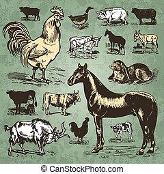 boerderij, ouderwetse , set, dieren, (vector)