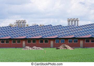 boerderij, panelen, zonne