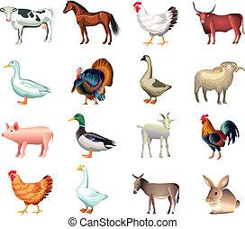 boerderij, set, dieren, vector
