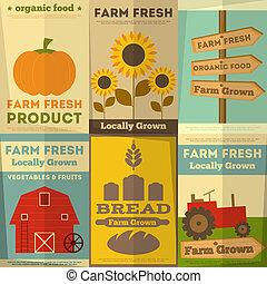 boerderij, voedingsmiddelen, set, organisch, affiches