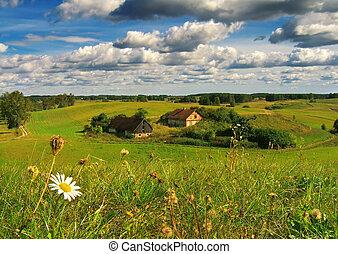 boerderij, zomer