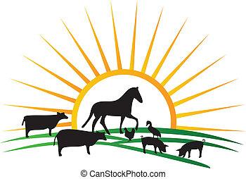 boerderij, zon, silhouettes, vector, dier
