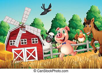 boerderijdieren, vrolijke