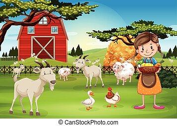 boerderijdieren, werkende , farmer