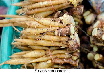 boesenbergia, thailand, alhier, markt