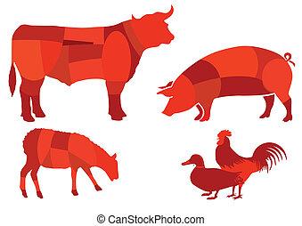 boeuf, viande