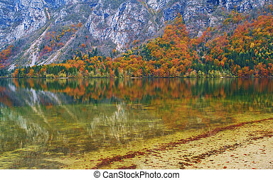 Bohinj lake, beautiful autumn colors the Julian Alps