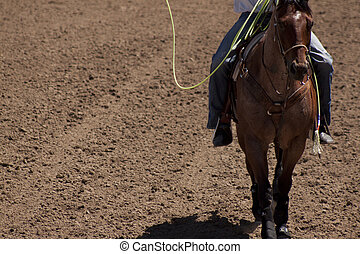 boiadeiro, horseback