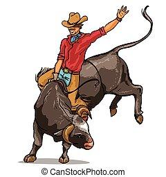 boiadeiro, montando, um, touro, isolado