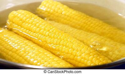 Boiled Corn Cob - Corn cob boiling in a pot