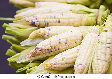 boiled corn ears.