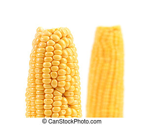 Boiled corns on a white background.