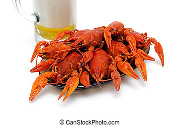 Boiled crawfish on a plate on a white background.