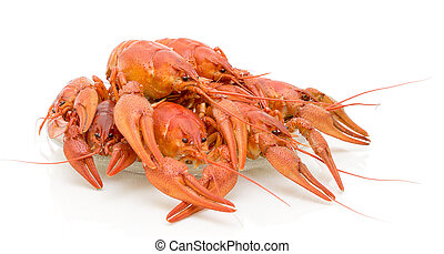 Boiled crawfish on a white background - Boiled crawfish on a...