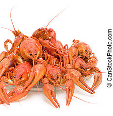 Boiled crayfish on a white background close-up