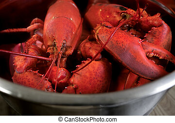 A pot of boiled lobster from Nova Scotia.