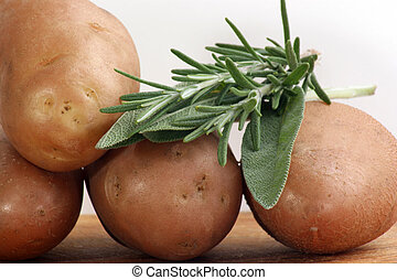 Boiled potatoes with rosemary and sage