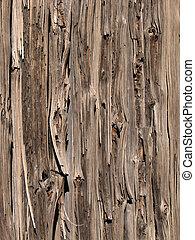 bois, a mûri, barrière