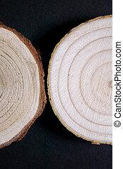 bois, annuel, anneaux, arrière-plan., section transversale, noir, bois, close-up., morceau